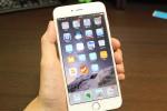 安価だが十分満足な仕上がり。iPhone 6 Plus用『Aukey 強化ガラス液晶保護フィルム SP-G12』レビュー